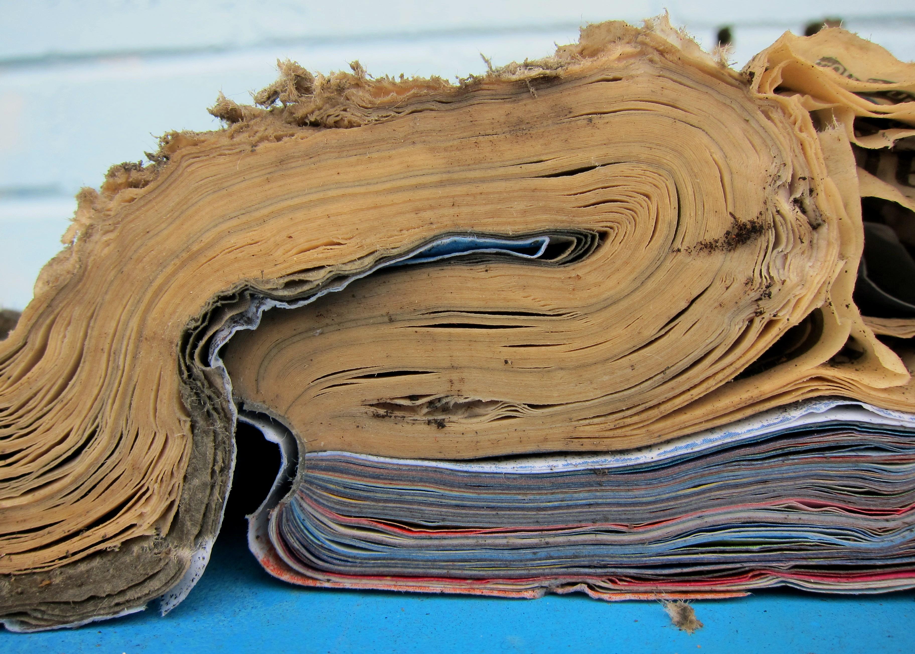 Water-damaged Book